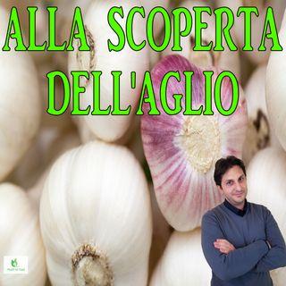 Episodio 93 - SCOPRIAMO L'AGLIO ED I SUOI BENEFICI - Le proprieta dell'aglio