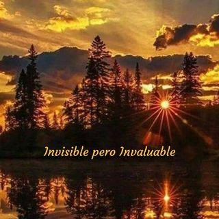 Invisible pero Invaluable