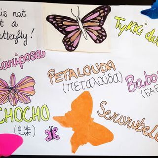 Languages and butterflies: the importance of diversity in our lives