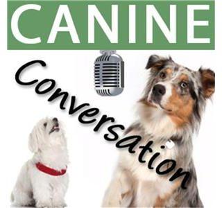 Canine Conversation