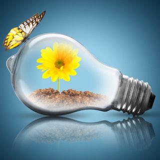 Quanto si risparmia con le rinnovabili?