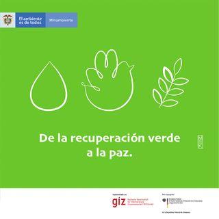 De la recuperación verde a la paz