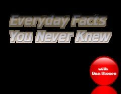 Everyday Facts 8