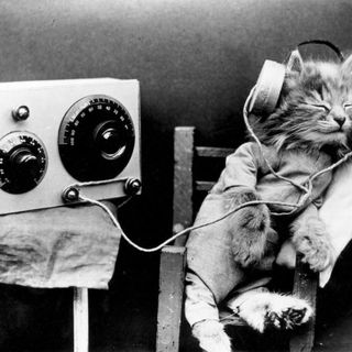 The Kitten Kong Radio Show 782: The Spirit Of Radio.
