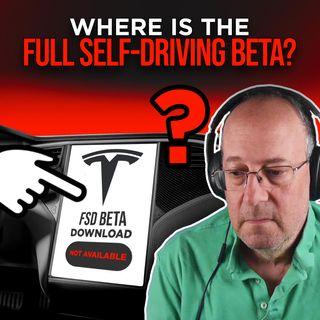51. Tesla FSD Beta, Where is it? | Warren Redlich