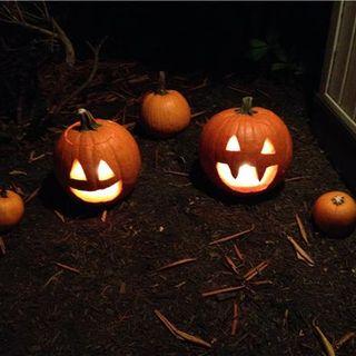 Halloween Hangover 2015