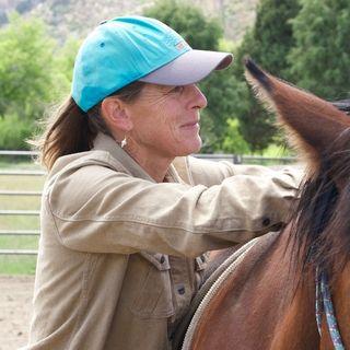 Maddy Butcher - Best Horse Practices Summit Organizer