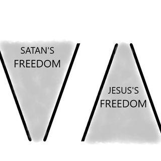 WEEK 8- FREEDOM