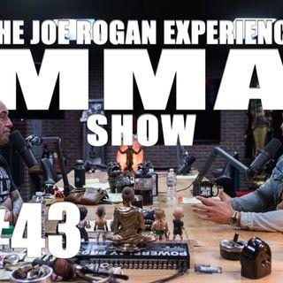JRE MMA Show #43 with Brendan Schaub