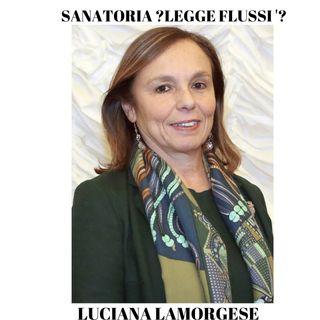 SANATORIA ? LEGGE FLUSSI 2020 ? NOUVEAUX TYPES DE PS