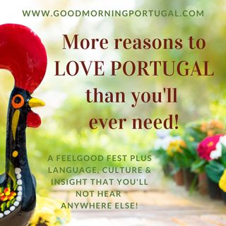 Portugal news, weather and SO MANY reasons to love Portugal!