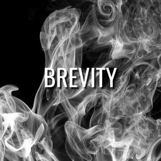 Brevity - Morning Manna #3209
