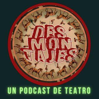 "Episodio 3: ""La Tortuga"", Teatro en pandemia"