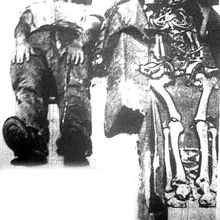 Giants In America? Part 2 Fact or Fiction? w/ #TheHistoryHeretic