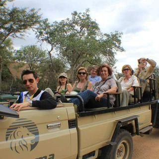 ¿Por qué viajar a Sudáfrica? ¿merece la pena? Acompáñanos de viaje por la nación arco iris