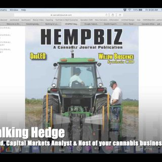 Interview with CEO of Hemp Biz Magazine (2019)
