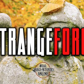 Strange Force | Haunted, Paranormal, Supernatural