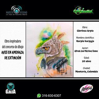 NUESTRO OXÍGENO El arte y las aves - Luis Fernando Echeverry