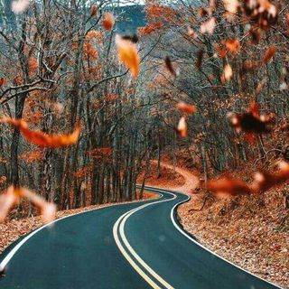 """Guided Meditation - Fall Inspired """"End of an Era"""""""