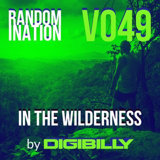 Randomination V049 - In The Wilderness
