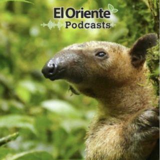 Episodio 9 - Entrevista con el Dr. Arturo Moscoso