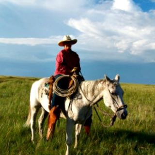 A Prayer for One Old Cow Girl