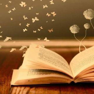 I migliori libri di fiabe per bambini, tra passato e presente.