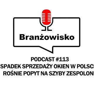 Branżowisko #113 - Spadek sprzedaży okien w Polsce. Rośnie popyt na szyby zespolone