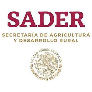 SADER registra superávit en primer semestre del año
