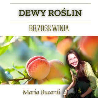 Dewy Roślin  - BRZOSKWINIA - Maria Bucardi