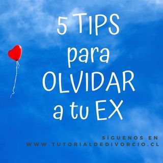 5 TiPs PaRa OlviDaR a Tu eX