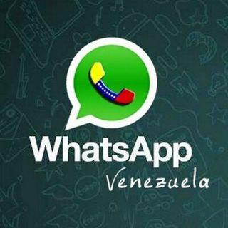 Brasil E Venezuela / 10 Anos De WhatsApp
