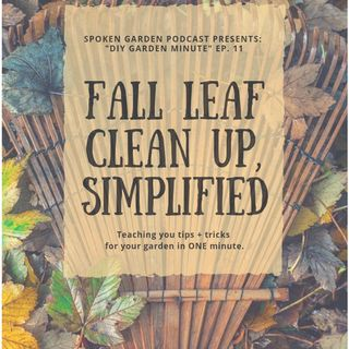 DIY Garden Minute Ep11 - Fall Leaf Cleanup, Simplified