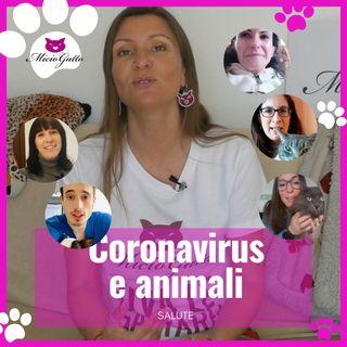 Coronavirus e animali - Tutta la verità!