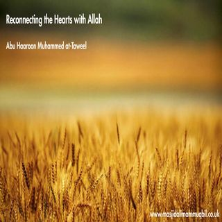Reconnecting the Hearts with Allah | Abu Haroon Muhammad at-Taweel