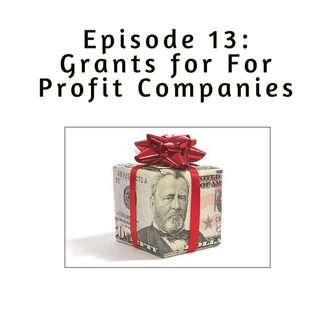 Ep 13: Grants for For Profit Companies