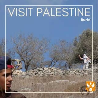 Visit Palestine: 08 Burin – Violenza dei coloni