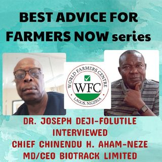 CHIEF AHAM-NEZE BEST ADVICE FOR FARMERS NOW