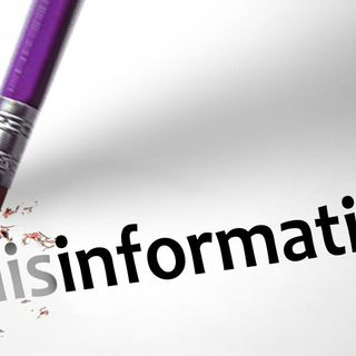 The Rise of Digital Disinformation