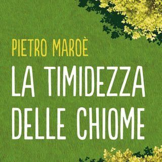"""Pietro Maroé """"La timidezza delle chiome"""""""