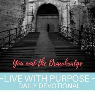 #041 You and the Drawbridge