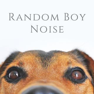 Random Boy Noise Episode 1: Pilot