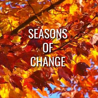 Seasons of Change - Morning Manna #3129