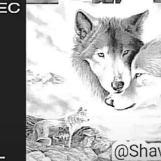 Shavy~G// Te Sueñõ
