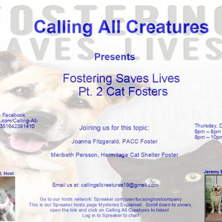 Calling All Creatures Welcomes Meribeth Persson & Joanna Fitzgerald