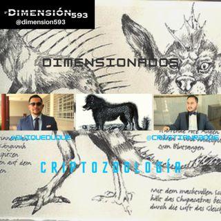 CRIPTOZOOLOGIA || QUE SON LOS ANIMALES CRIPTIDOS?? || BIG FOOT || EL DEMONIO NEGRO