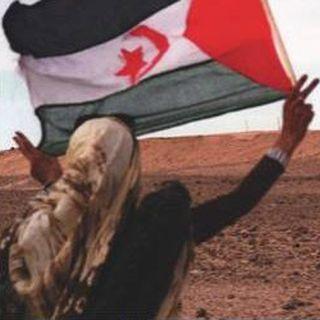 L'oppressione del popolo Saharawi: L'Italia non volti le spalle