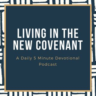 Episode 42:  Romans 1:18-20 (Rebroadcast)