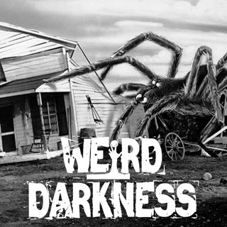 """""""The Spider Petting Zoo"""" and """"Ancient Lights"""" #CreepypastaThursday"""