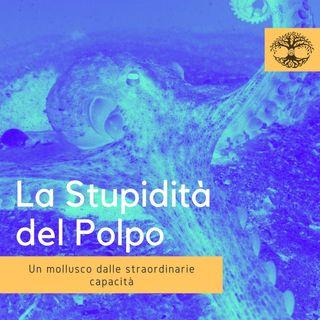 La Stupidità del Polpo ( o è Intelligenza?!) - Comportamento Animale
